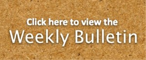 Weekly Bulletin_small